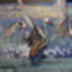 "swans ""swan lake"" 72x60 (2).JPG"