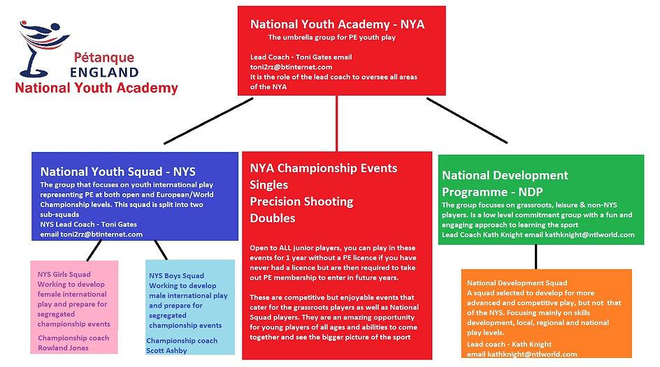 NYA layout.jpg