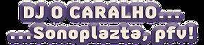 sonoplazta_pfv.png