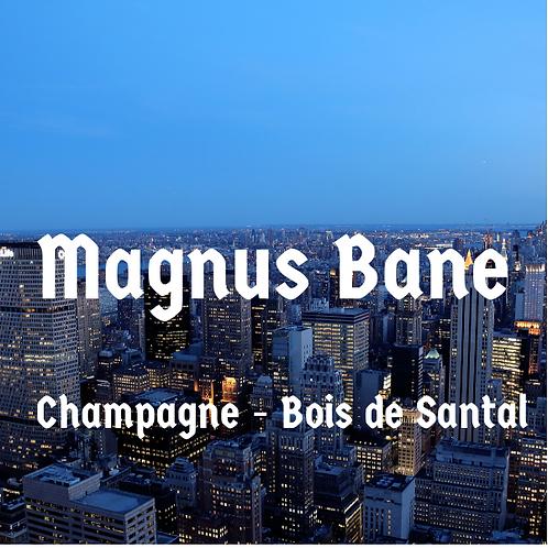 Bougie parfumée - Magnus Bane