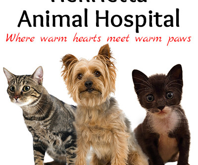 A New Look for Henrietta Animal Hospital