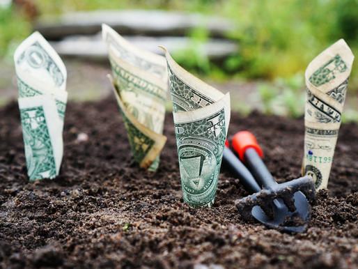 3 Opciones para comenzar a Invertir tu dinero