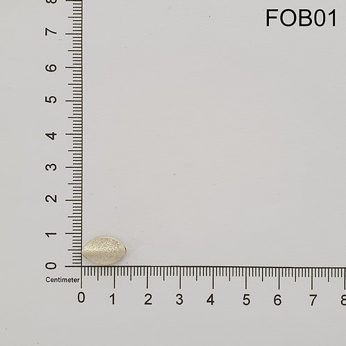 FOB01