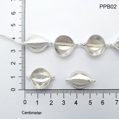 PPB02