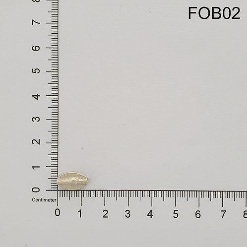 FOB02