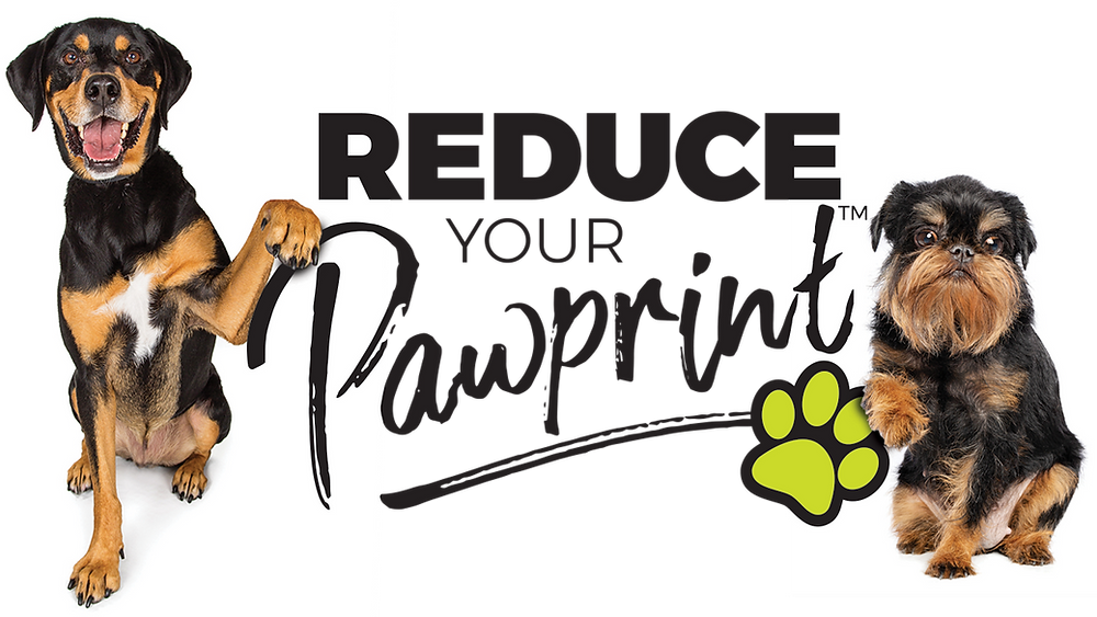 Chica + Co - Dogs - Reduce your Pawprint