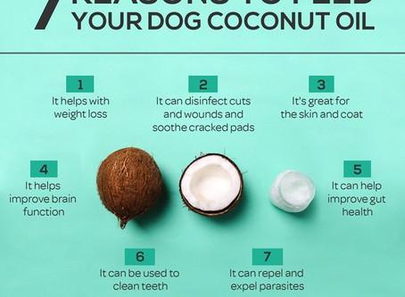 Coconut Oil is da Bomb!