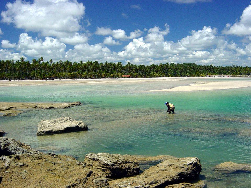 Praia / Cosmopolitan Hostel Recife