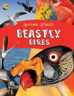 Beastly_Birds copy