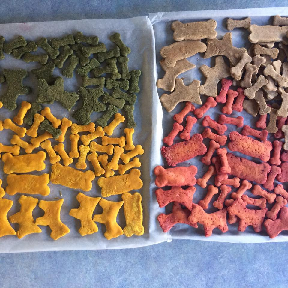 Yummy veggie biscuits are all natural and gluten free, so if your dog has allergies they are the perfect treat