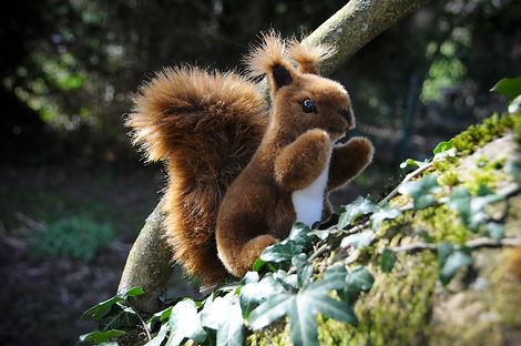 Kösen Eichhörnchen.jpg