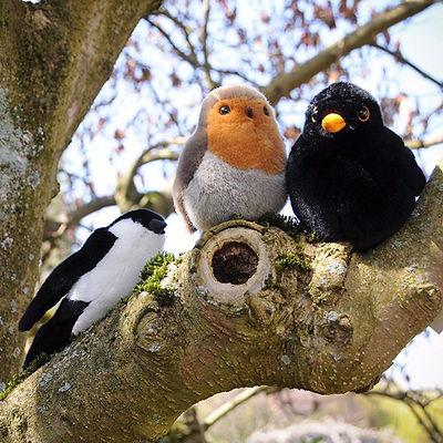 """<Anzeige> . """"Kleiner Vogel dort im Baum,"""