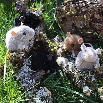 <Anzeige> . Die kleinen Mäuse mit den Kn