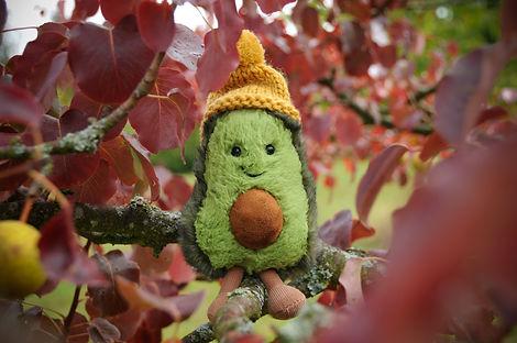 Jellycat Avocado Kopie.jpg
