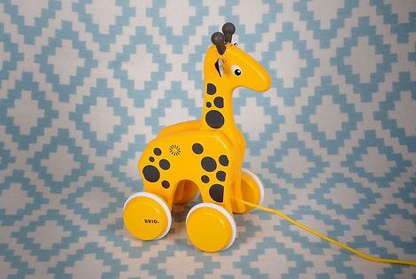 Nachzieh giraffe.jpg