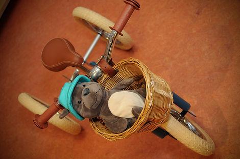 Trybike 2.jpg