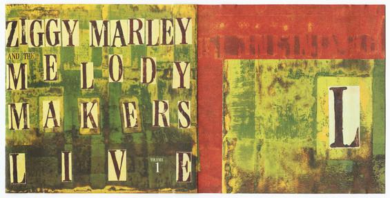 Ziggy Marley / Live