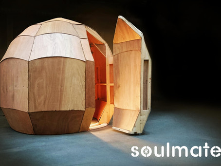 Project Soulmate | Construction Log