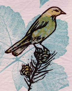 Karine Le Pabic-carrières-Oiseau.jpg