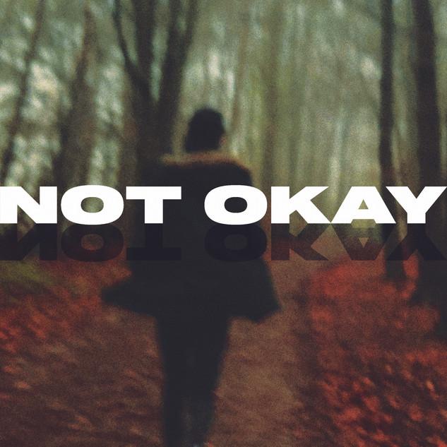 Not Okay - Danny Hallen