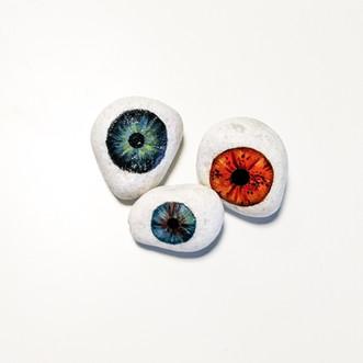 El ojo áptico