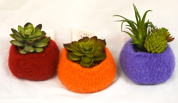 Felted Pod with succulent