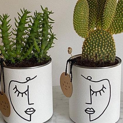 Cactus Pot Collection Visage Oeil Fermé