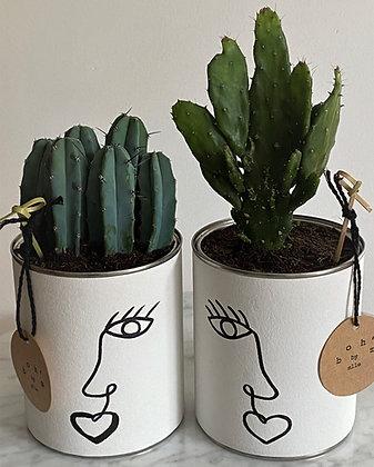 Cactus Pot Collection Visage Oeil Ouvert