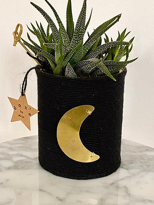 Cactus Pot Collection Capsule Exvoto Lune