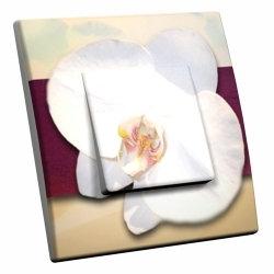 intérrupteur Décoratif Modèle Orchidée Blanche
