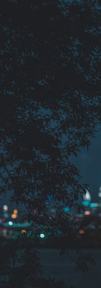 nyc-night.jpg