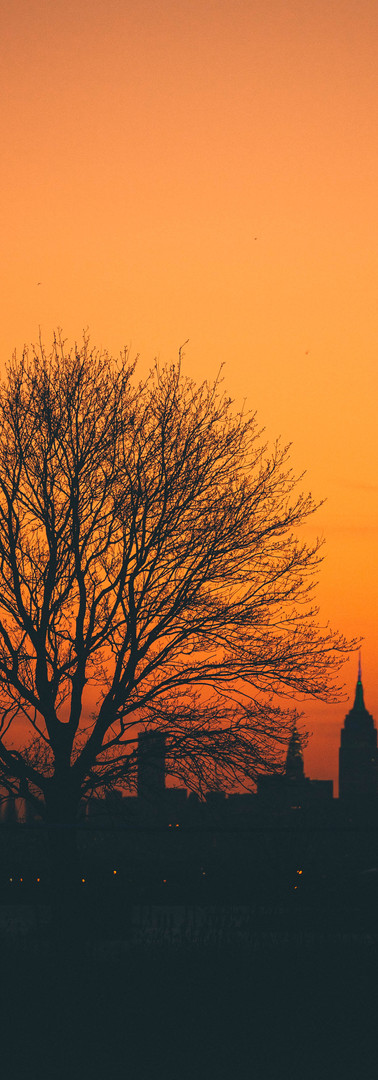 NYC_sunset2.jpg