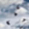 Screenshot 2020-07-03 at 16.35.30.png