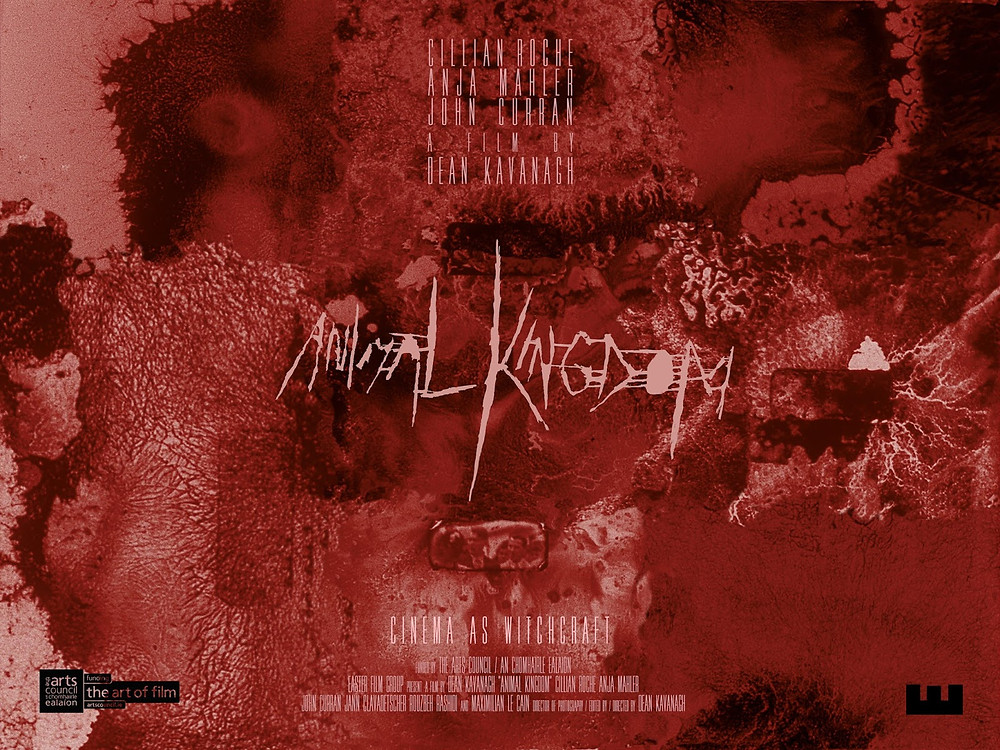 Animal Kingdom Dean Kavanagh poster 2