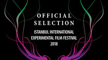 Animal Kingdom @ Istanbul International Experimental Film Festival