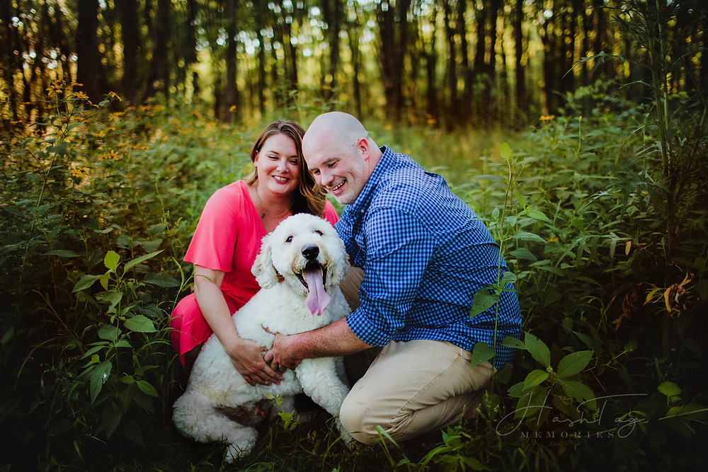 wildflower field engagement fort harrison, indianapolis wedding photographer