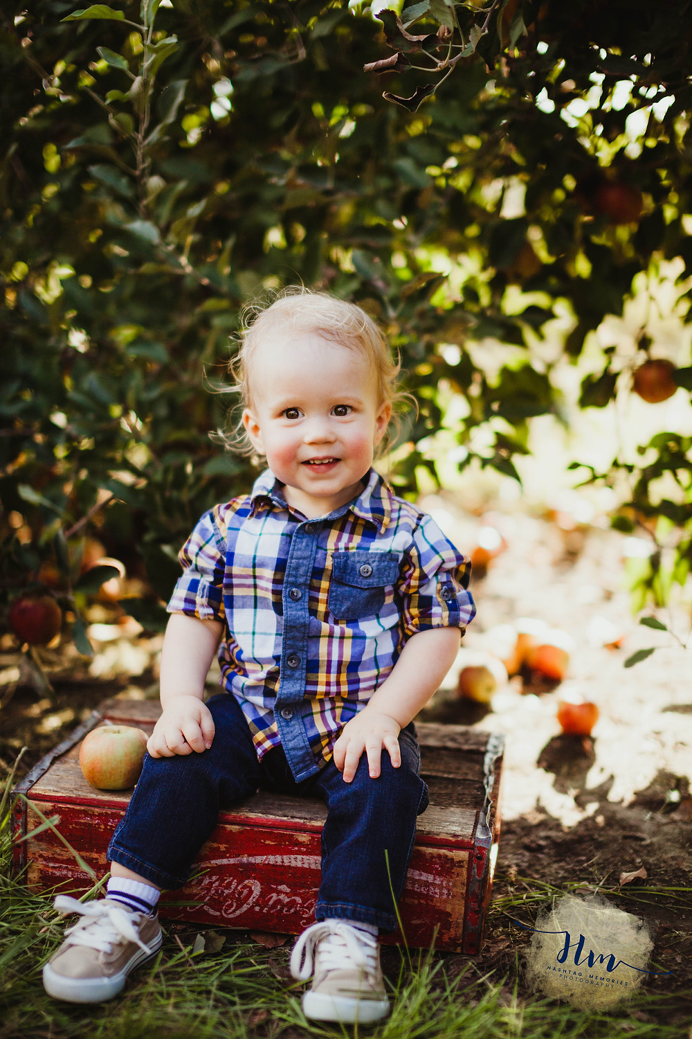 Toddler family photos at Tuttle Orchard by HashTag Memories Photography