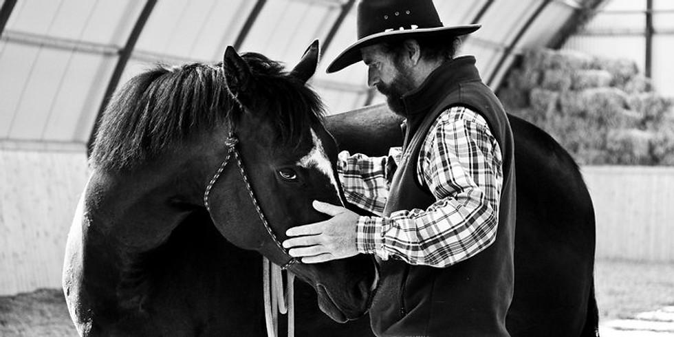 The Attic / Livingston Montana