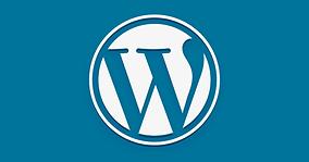 WordPress-787x413.png