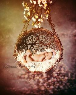 #photography #newbornphotography #newbornbaby #newbornphotographer #newbornshoot #newbornprops #fusi