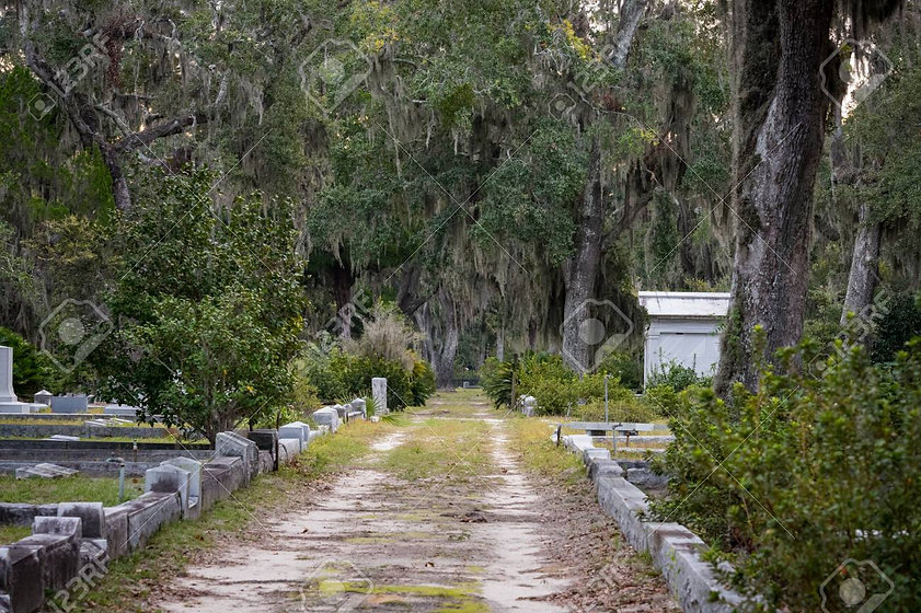 Book cover-grave-lined-dirt-road-through