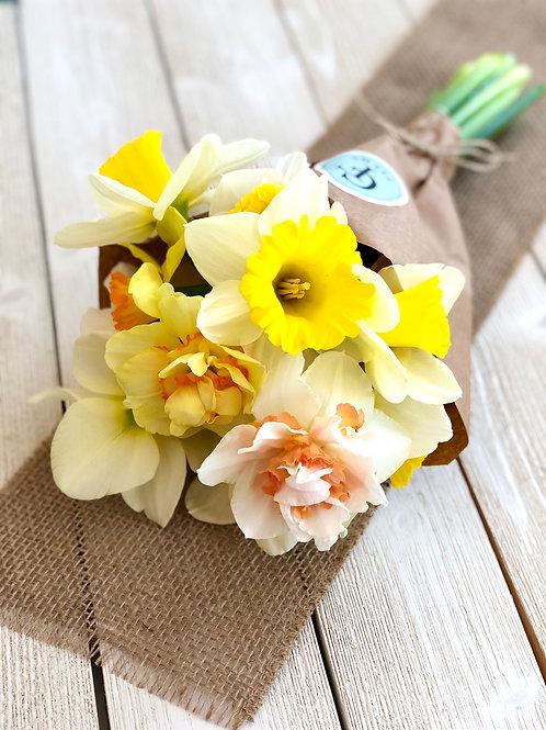 Mixed Daffodil Bunch