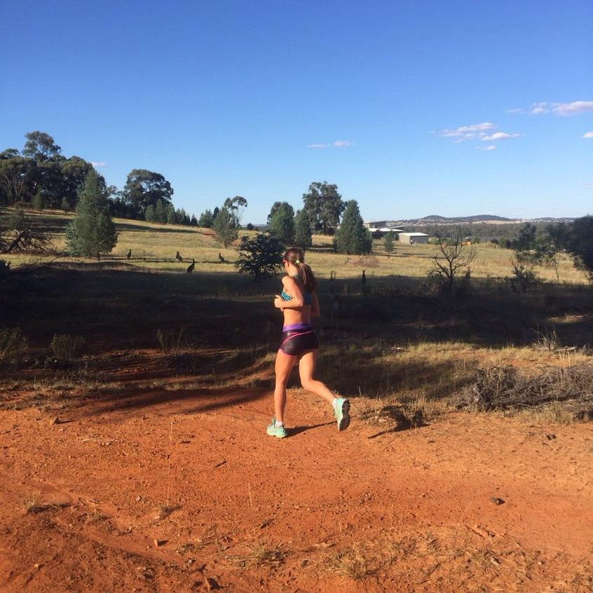 Long run in Wagga heat