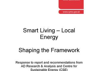 Smart Living - Local Findings. Shaping the Framework