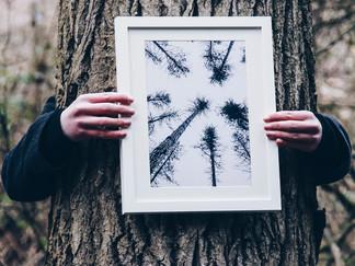 Framed print for sale £20 each.