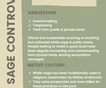 White Sage Ethics