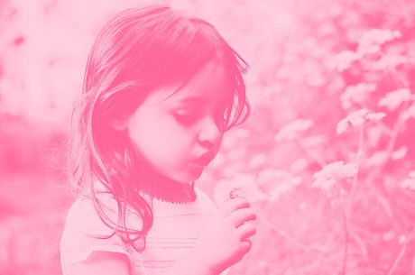 Dandelion_edited.jpg