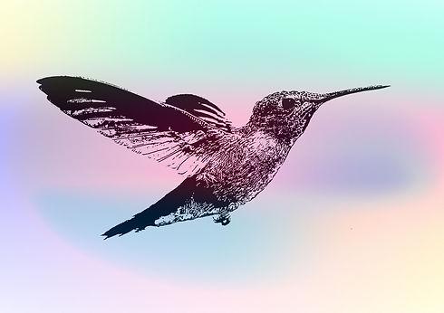 hummingbird%202_edited.jpg