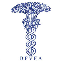 SQUARE_BFVEA_Logo_BLUE.jpg