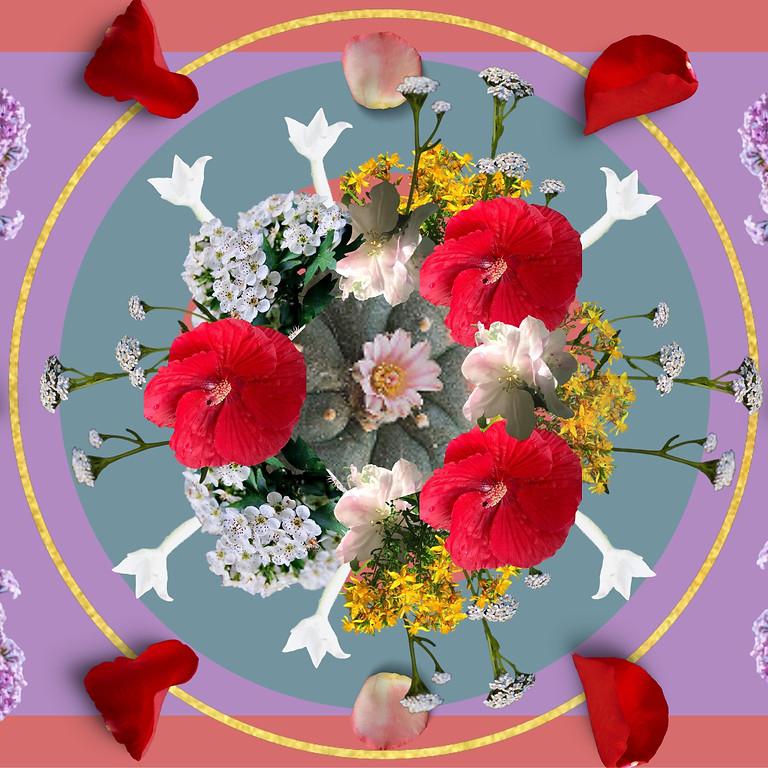 Flower Essences - An Introduction